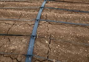 灌溉绿化案例
